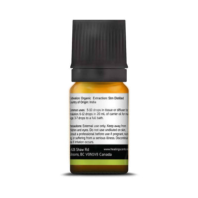 Essential Oil - Litsea Cubeba Essential Oil