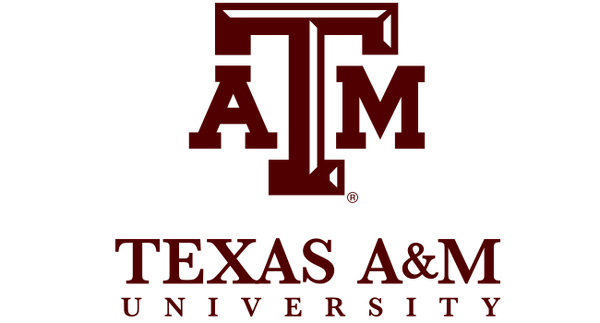 Texas A&M University Tie Colors