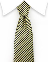 Gold and Black Skinny Necktie