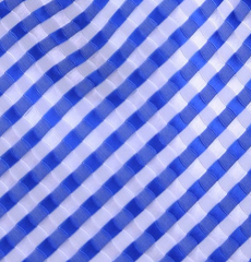 Blue and White Tie Swatch
