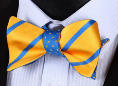 Yellow & blue bow tie