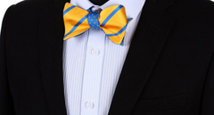 yellow and blue bow ties