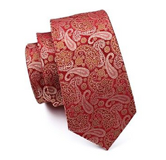 red gold paisley tie