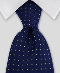 navy gold necktie