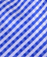 Blue and White Checked Tie