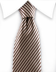 Brown Striped Teen Tie