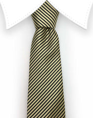 Gold and Black Skinny Tie