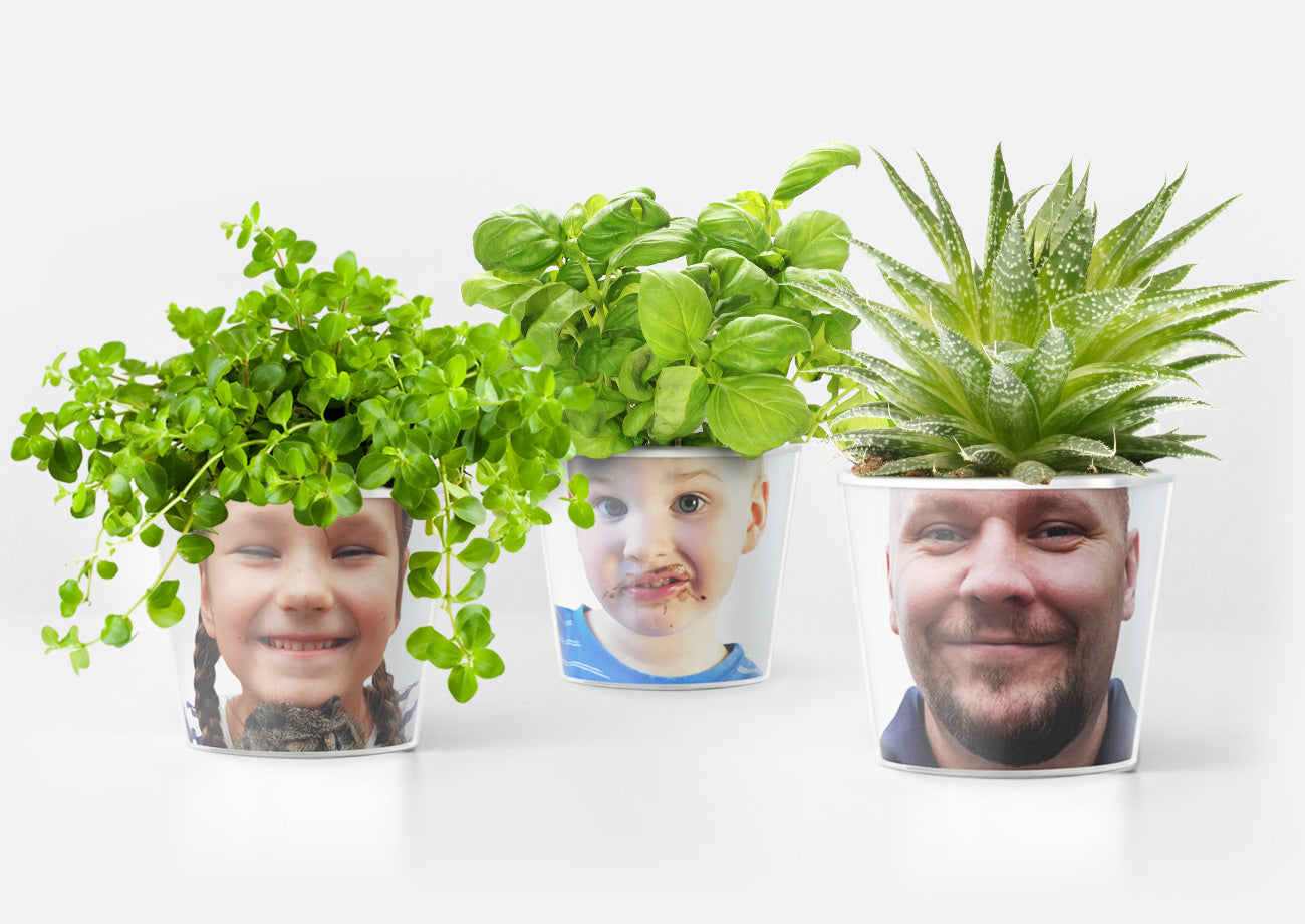 Facepot Familien Set