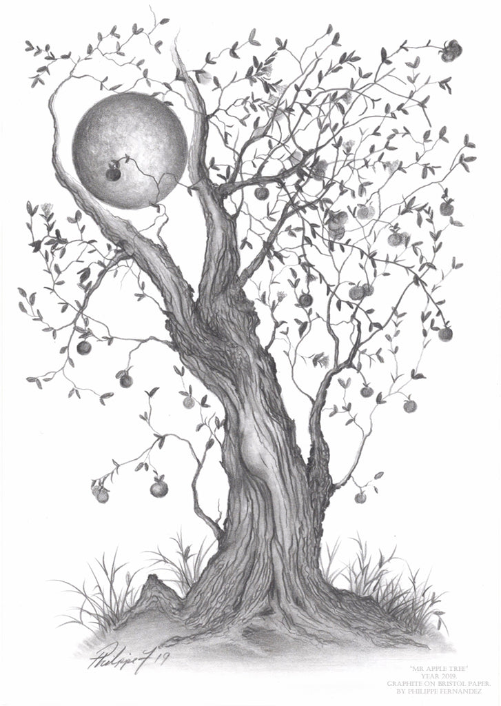 """Mr Apple Tree"" Original Graphite Pencil Drawing By Philippe Fernandez."