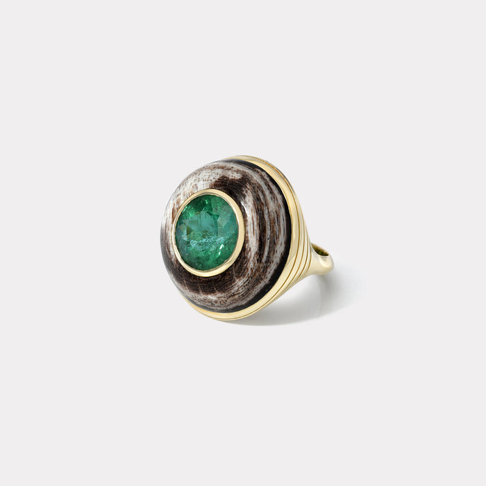 One of a Kind Lollipop Ring - Round 5.52ct Green Tourmaline in Petrified Wood