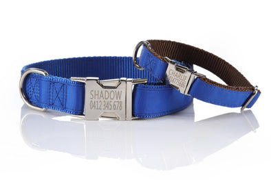 Personalized Pet Collar - Metal Buckle, Nylon and Colored Ribbon
