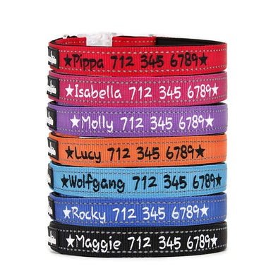 REFLECTIVE & PADDED - PERSONALISED DOG COLLAR NEW