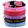 Personalized - Soft Cotton Canvas Dog Collar