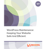 WordPress Maintenance: Keeping Your Website Safe And Efficient