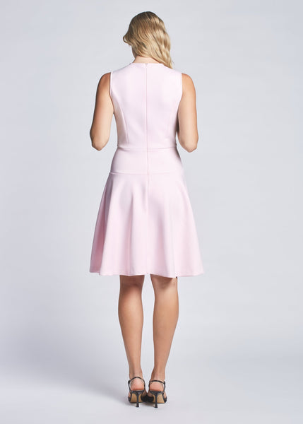 Dana dress pale pink back view.