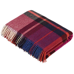 Bronte by moon madison check mulberry throw