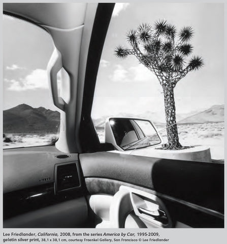 CV88 - Lee Friedlander