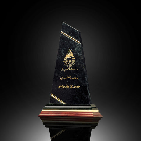Trendsetter Black Marble Tower Award
