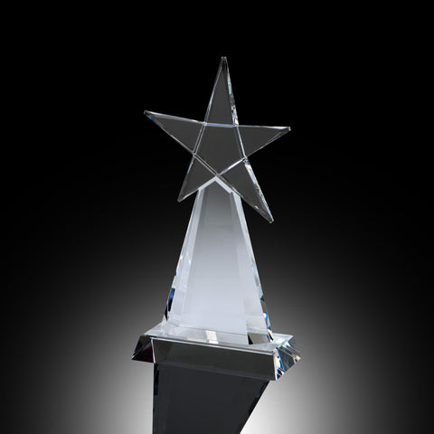 Evolving Star Elite Crystal Award