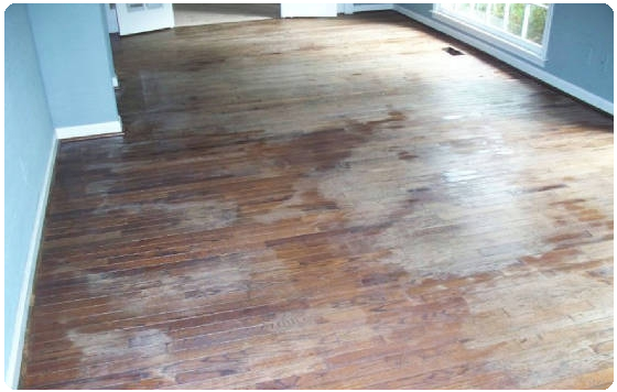 laminate floor before cleaning with lamanator plus