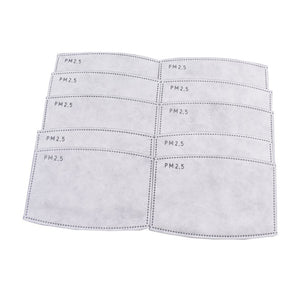 PM2.5 FACE MASK DISPOSABLE FILTERS 10pk
