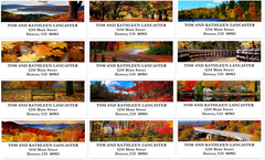 Fall Colors Sheets of Address Labels
