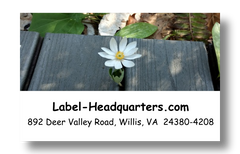 Blooming Flowers Address Labels on Sheets