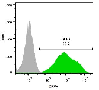 flow cytometry eGFP