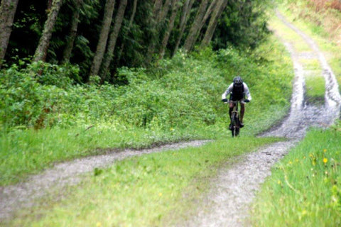 Trails in Port Gamble, WA