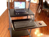 "STS5801E 24"" Black Mobile Computer Desk with Tower Printer Shelf - Oceanpointe Distributors Corporation"