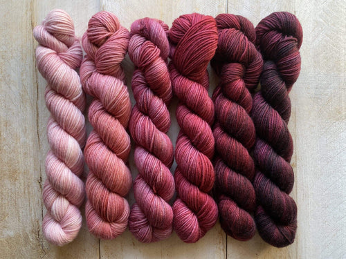Mini Skeins of Yarn PAINTBOX gradient yarn set  BLUSH