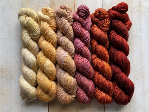Mini Skeins of Yarn PAINTBOX gradient yarn set  COMO LA FLOR