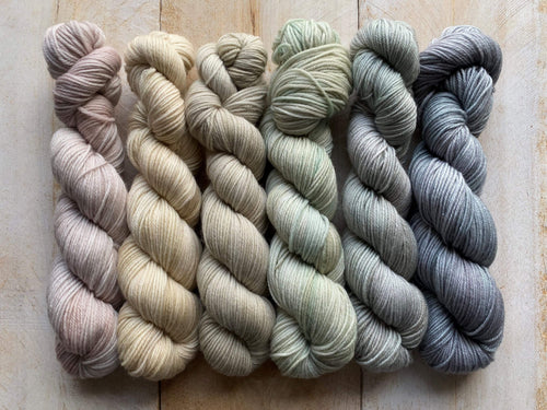 Mini Skeins of Yarn PAINTBOX gradient yarn set  JARDIN DE GIVRE
