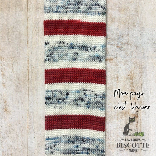 DK weight yarn ♥ Bouquet self-striping Mon Pays c'est l'hiver