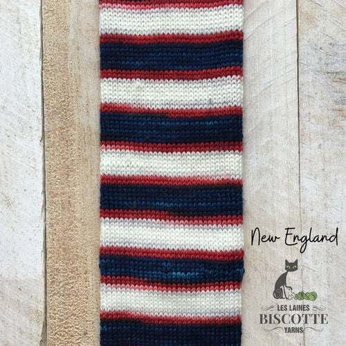 Bis-sock yarn Final Battle self-striping hand-dyed yarn NEW ENGLAND