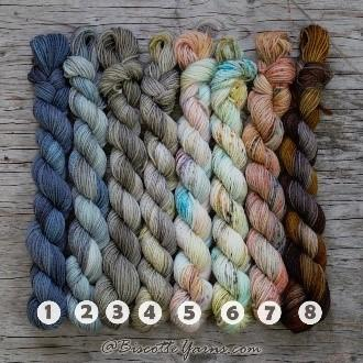 Biscotte-mini yarn set