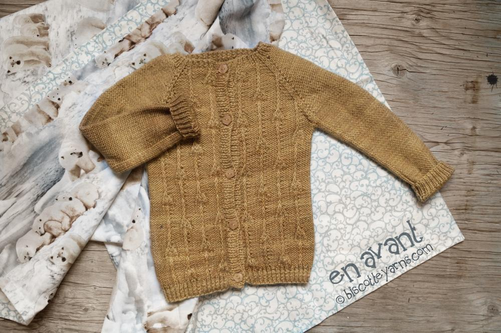 Knitting pattern for Baby Cardigan En Avant!