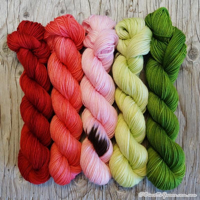 Assortment of WATERMELON Colour Paintbox Yarn - Biscotte yarns