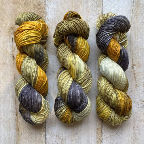 DK PURE | variegated dk weight yarn Madame B