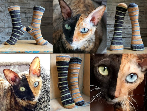 Stella the Two Face Cat | Free Sock Pattern