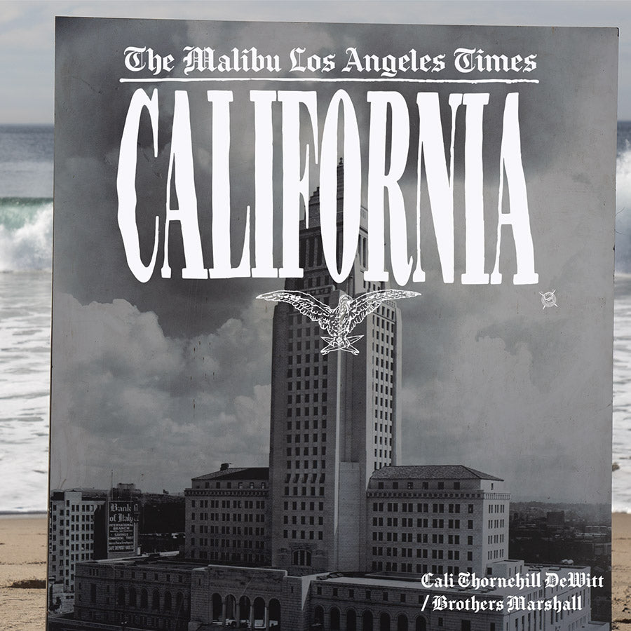 THE MALIBU LOS ANGELES TIMES ZINE