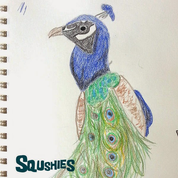 peacock doodle