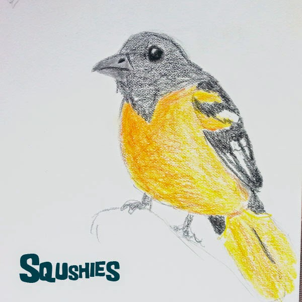 Baltimore oriole doodle