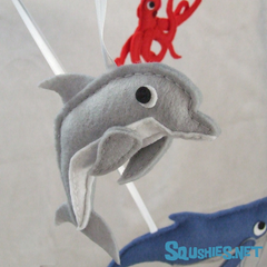 Dolphin Squshie