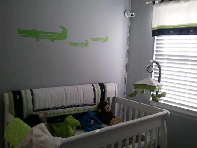 Alligator Wall Decals for a Baby Room