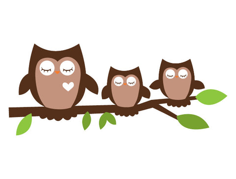 Sleeping Owls Wall Decal