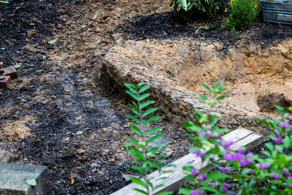 Side angle image of the gentle slope with the cinder blocks removed to show where the retaining wall will need building.  The branch of a beautyberry bush is  in the foreground