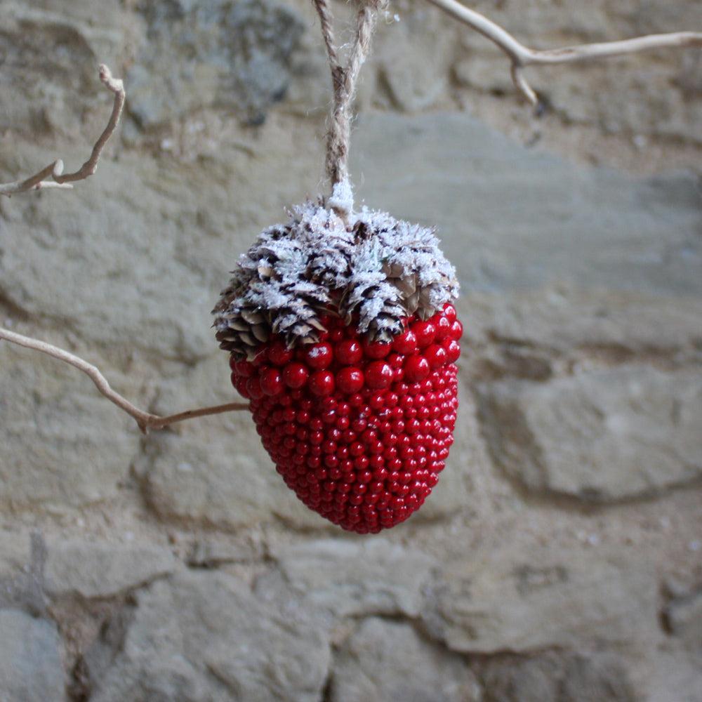 Berry acorn cone top