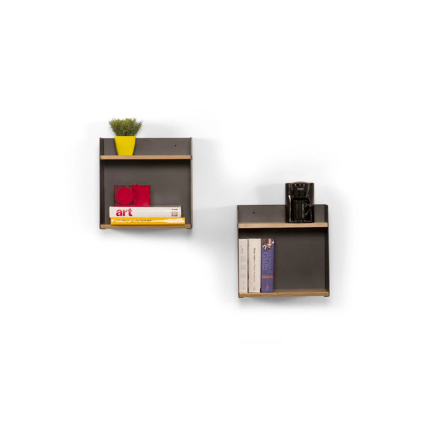 Arial Shelves (Set of 2)