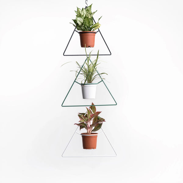 Delta Hanging Planter (Set of 3)